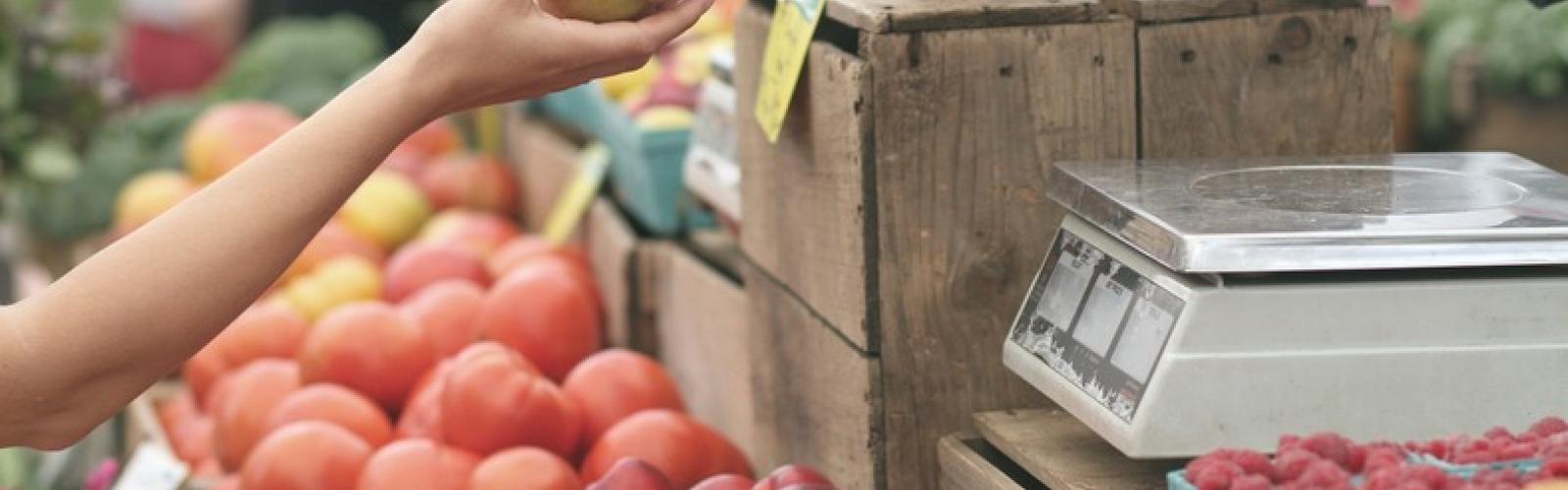 foto boerenmarkt