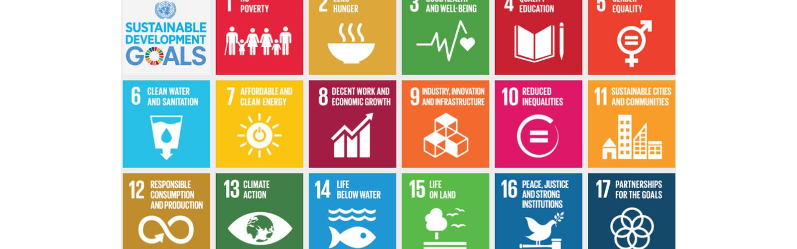 SDG-groot.