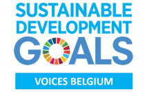 logo SDG Voices