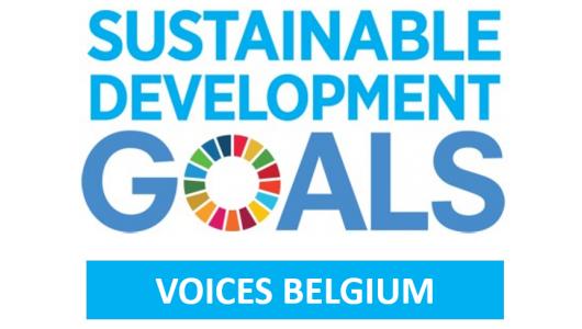 logo SDG Voices