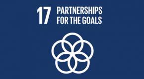SDG 17 icoon