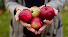 een handvol appelen