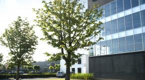 foto van een gebouw
