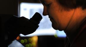 vrouw werkt met microscoop